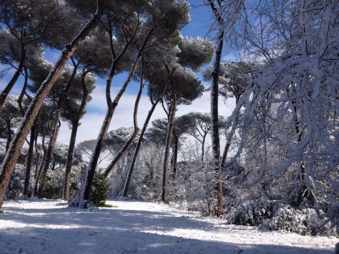 escapada ciudad eterna nevada Roma con nieve