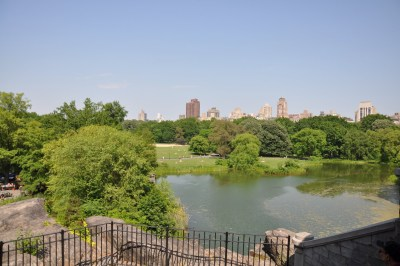 Milieu de Central Parc