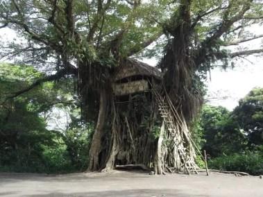 Cabane dans les arbres : rêve de gamin !!
