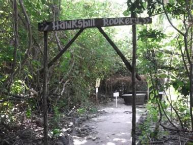 Sanctuaires des tortues sur l'île de Moso