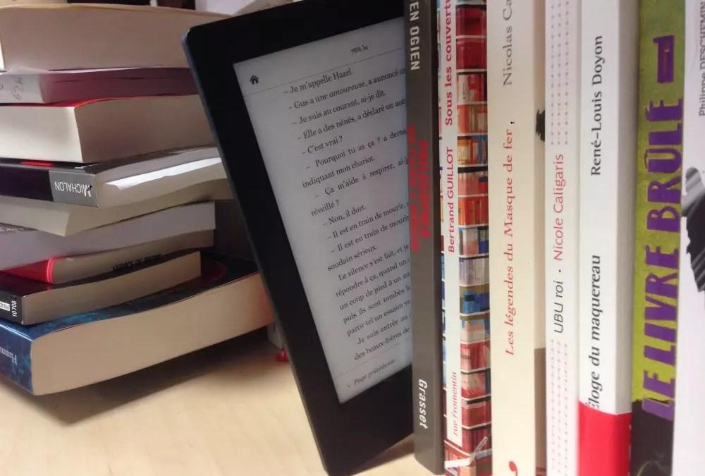 Lectures en voyage et liseuse