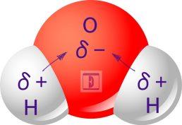 Polaridad de los enlaces covalentes del agua.