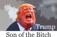 Los Cárteles de Trump y la CIA...