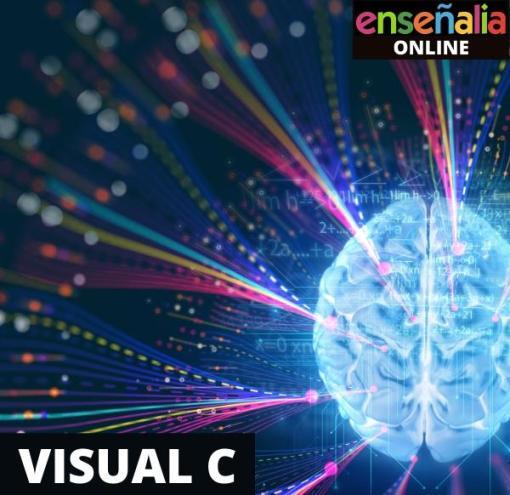 Visual C