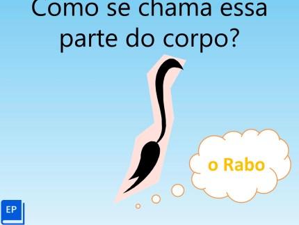Material auditivo para aulas online de português para estrangeiros com material sobre animais em formato .ppt e com guia passo-a-passo.