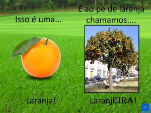 Essa é uma atividade voltada para suas aulas online focada em vocabulário de frutas e árvores frutíferas em português.
