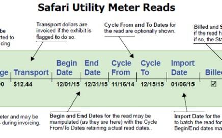 Safari Utility Meter Reads