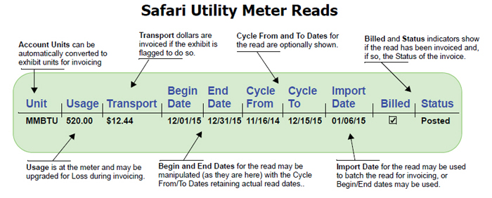 Safari Utility Meter Reads