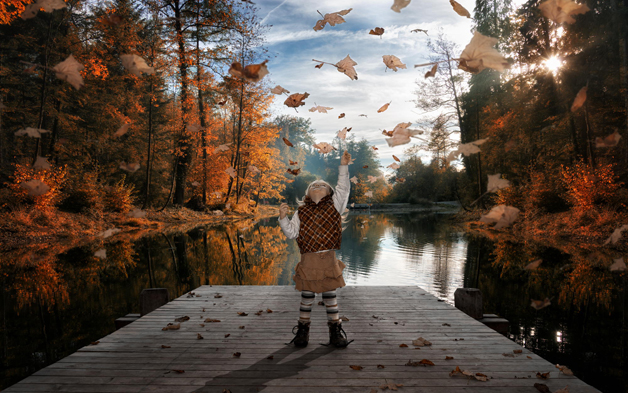 Just falling autumn leaves