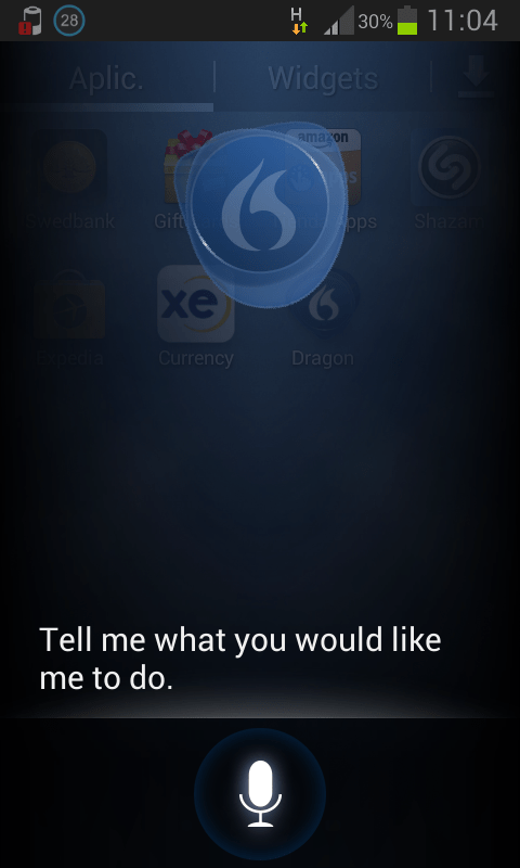 Dragon Mobile Assistant 1