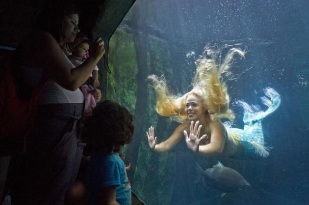 Real Mermaid Mirella Ferraz
