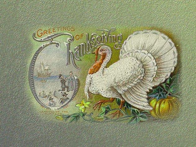 Thanksgiving Wallpaper 10