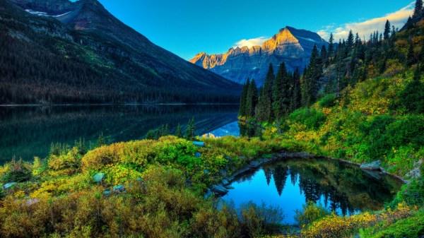 Nature green heaven