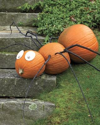 pumpkin-ant