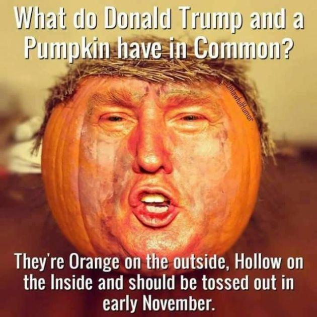 Halloween-Meme-Pictures