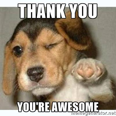 cute puppy funny thank you meme photo