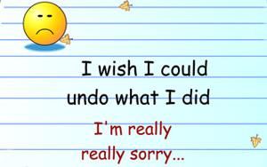 i wish i could undo what i did i'm really really sorry