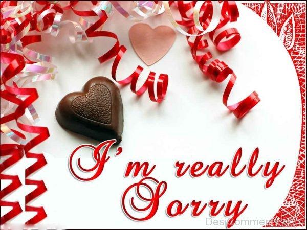 i'm really sorry