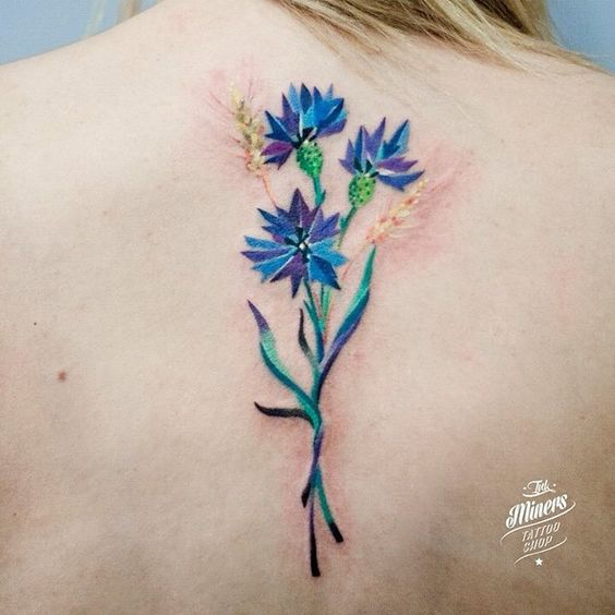cornflower tattoo design on back for females