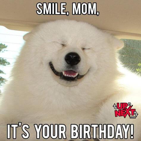 cute happy birthday mom meme