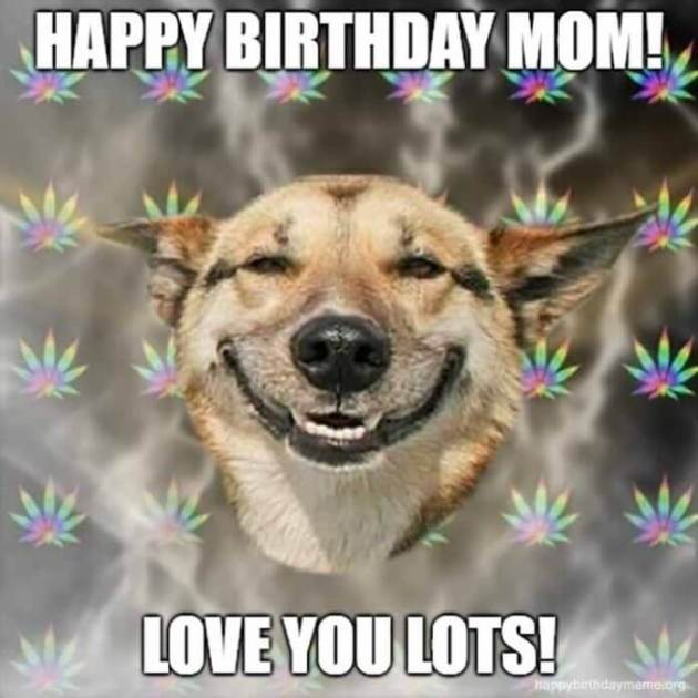 love you lots happy birthday mom meme