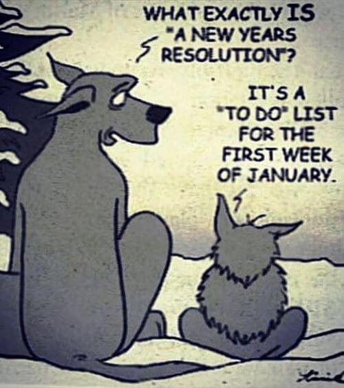 new year resolution meme for 2021