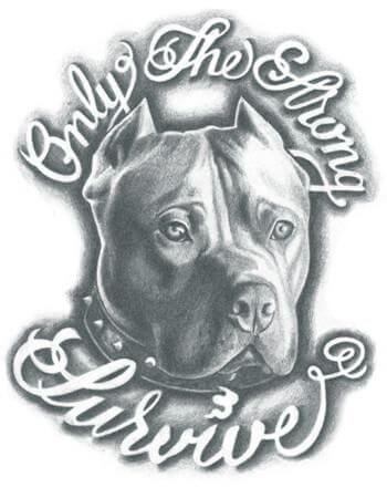 pitbull with only the strong survive tattoo design sketch for dog lovers