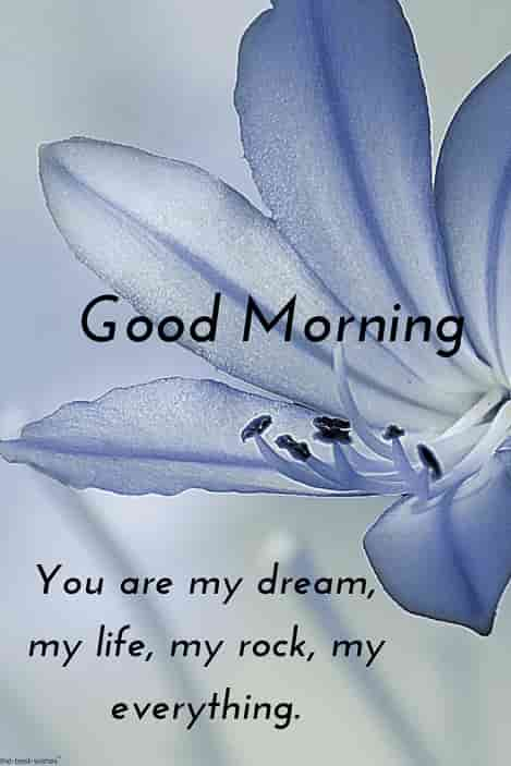 good morning message for special one flower image
