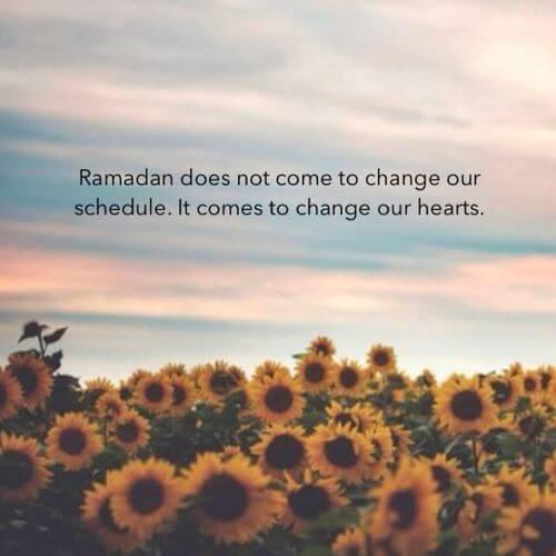 lovely ramadan message image
