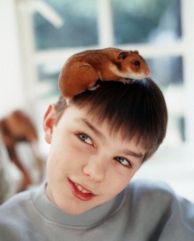 Nicholas Hoult childhood photo two at pinterest.com