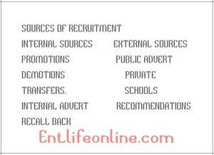 external and internal sources of recruitment https://www.entlifeonline.com/management/http-www-entlifeonline-com-2018-08-28-sources-of-recruitment-in-an-organization/