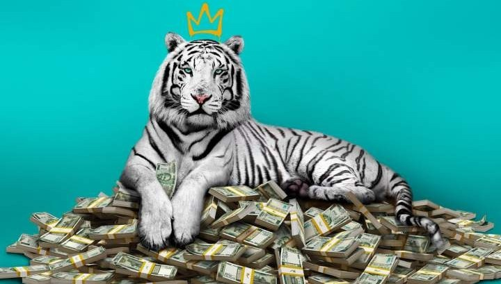 MOVIE : The White Tiger (2021)