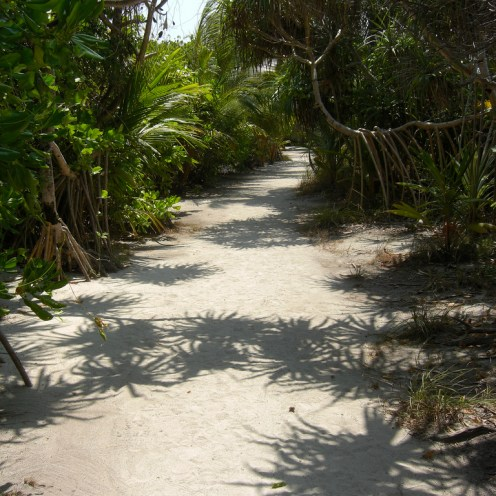 Projet 52 - chemin - Maldives
