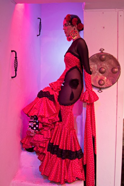 traje de Rosalia Zahino entreciriosyvolantes 3