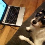 Tiene Facebook hasta el perro... Literalmente