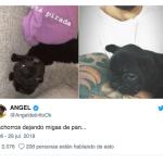 Fede Bal y Sol Pérez  juntos? Las fotos que disparan versiones de encuentros a escondidas