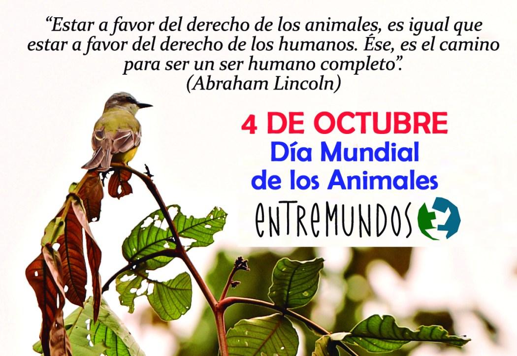 dia mundial animales