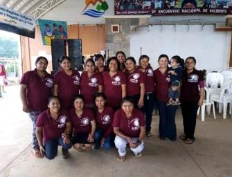 Consejo Indígena Popular De Oaxaca Ricardo Flores Magón:  Una organización que resiste y lucha