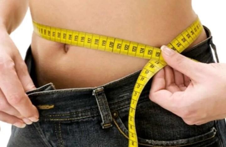 Durabilidad de la grasa parda en el organismo