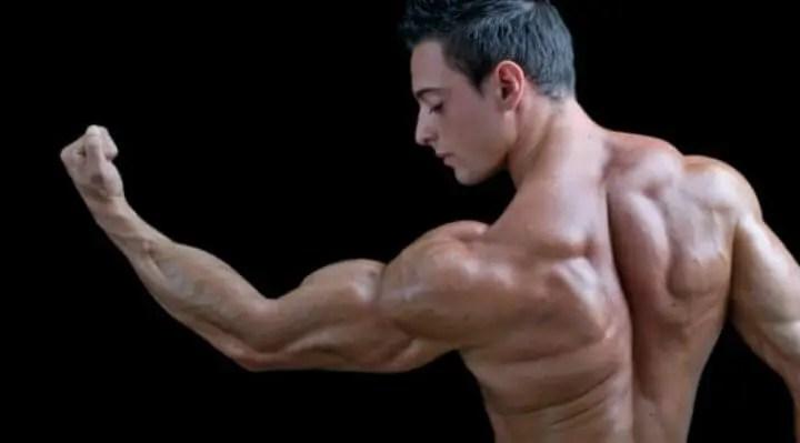 Cómo conseguir unos tríceps más grandes