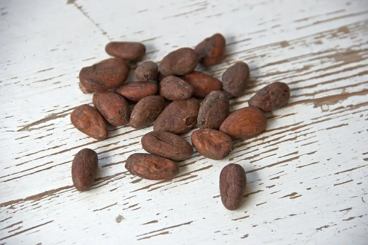Beneficios de los granos de cacao sin procesar