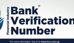 bank verification number