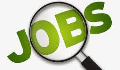 How to Apply for Software Engineer at Evince Nigeria Limited