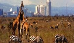 Travel destinations in Kenya Nairobi