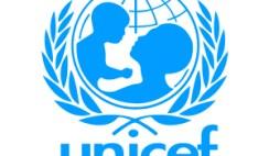 UNICEF Nigeria Recruitment-www.entrepreneur.ng