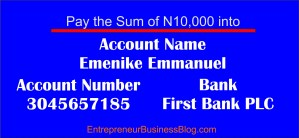 Make 6 digit figures income writing online in Nigeria