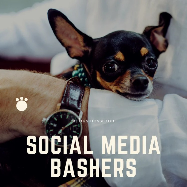 Handle and avoid social media bashers and trolls
