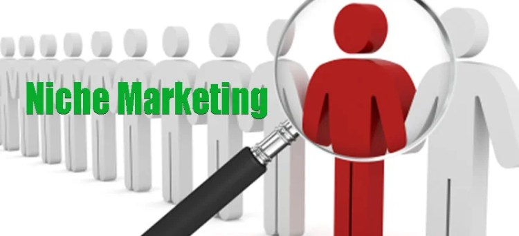 Niche digital marketing agency near me