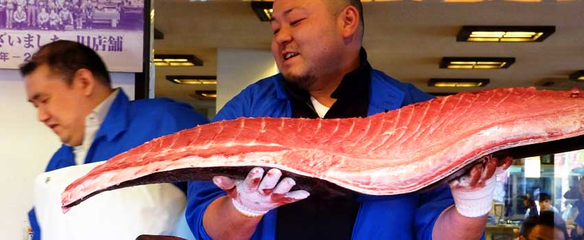 Chinese Billionaire pays $614,000 For Pacific Bluefin Tuna