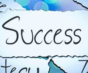 Key Success Factors That Guarantee Success in Private Business